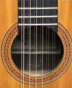12 string Guitar Berlin