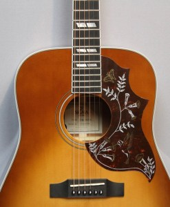 Sigma Guitars DM-SG5+ Folk Gitarre Guitar Shop