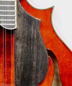 Eastman MD615 F-Mandoline 4