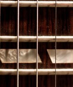 Gibson ES 175-1977 1