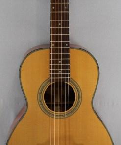 Richwood P-40 Guitar Shop