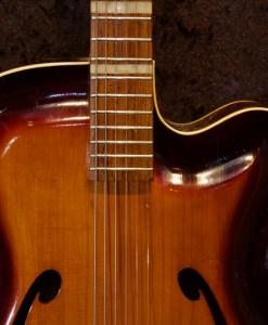 Roger Jazzgitarre