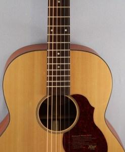 Richwood B-20 Baritone Gitarre