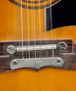 Framus J-12 Coco Schumann