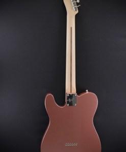 Fender AM Performer Tele