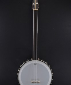 Berlin Custom Guitars - Fretless Banjo