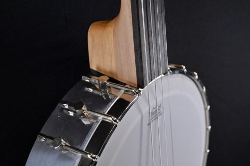 Berlin Custom Guitars - Fretless Banjo