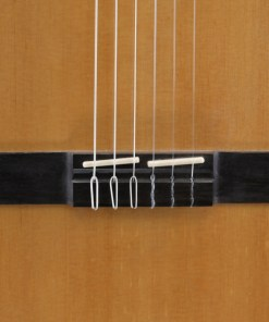 DG-560 Nylon String