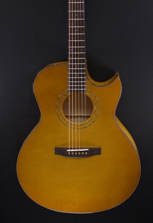 Lakewood J-50 Folkgitarre