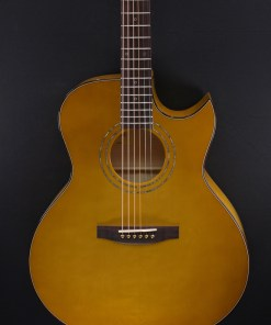Lakewood J-50 Folkgitarre