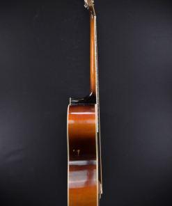 Levin Model 25 Kansas