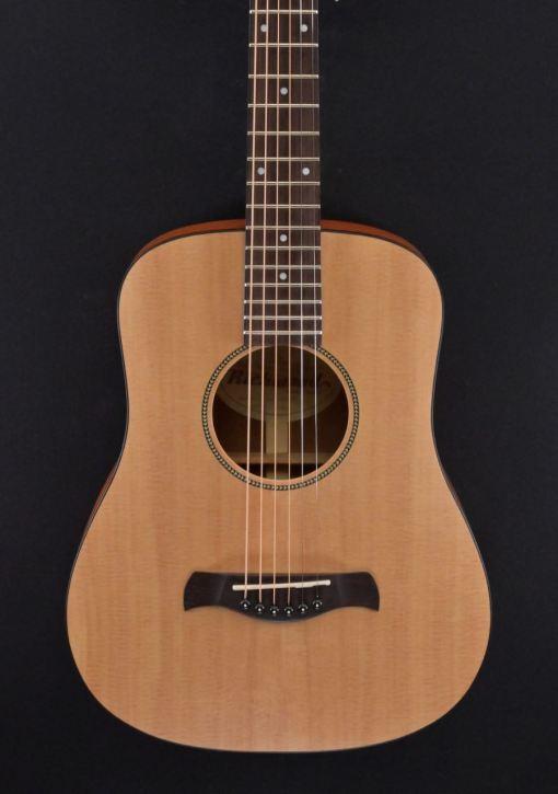 Richwood T-20 Traveller Guitar 4