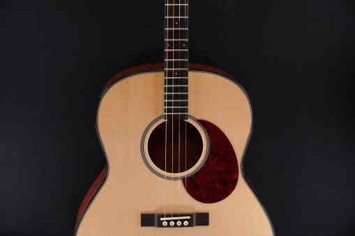 Goldtone Tenor Gitarre TG18