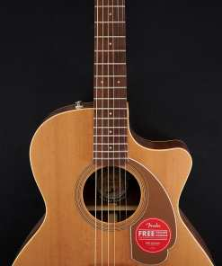 Fender Newporter Player Natural