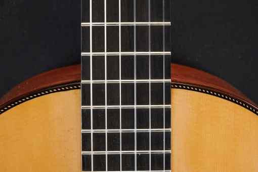 Matteo Guitars Fichte Santos