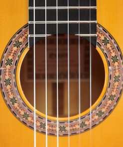 6F Esteve Special Flamenco