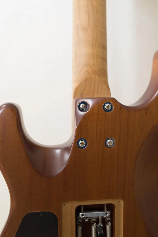 Th シャーベルギター「ガスリーゴーヴァンモデル」 DSC 3762