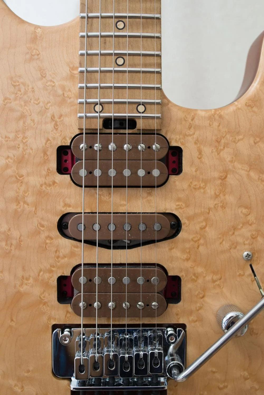 Th シャーベルギター「ガスリーゴーヴァンモデル」 DSC 3768