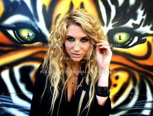 Kesha | Animal Chords Guitar Piano and Lyrics
