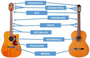 Parts of the Guitar: Diagrams for Acoustic and Electric