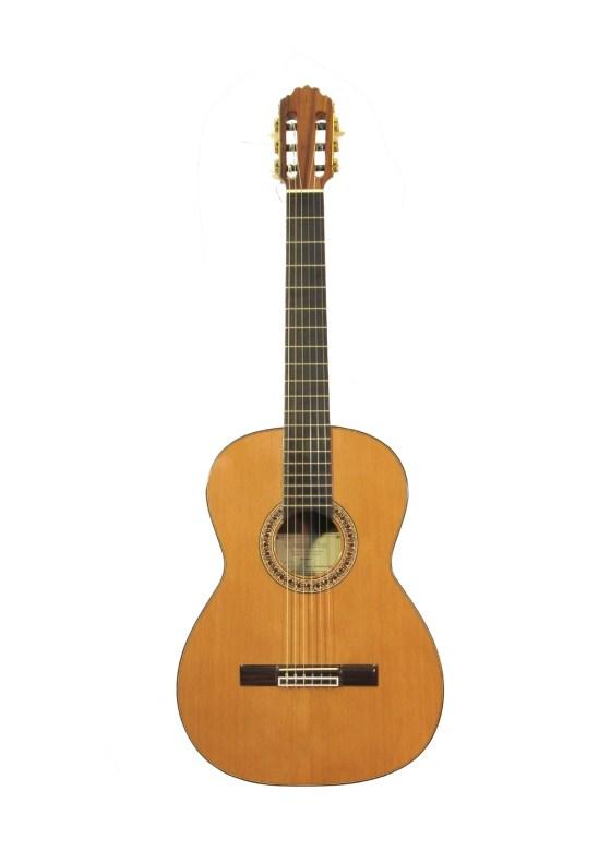 Guitarra clásica de Ziricote