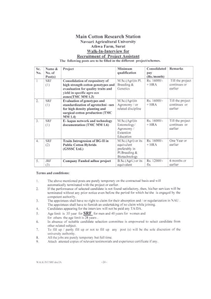 Navsari Agricultural University Research Fellow Vacancies 2013 Jobs