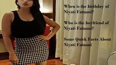 Photo of Niyati Fatnani, Age, Height, Biography, Boyfriend, Weight, Family, Photo, Wiki