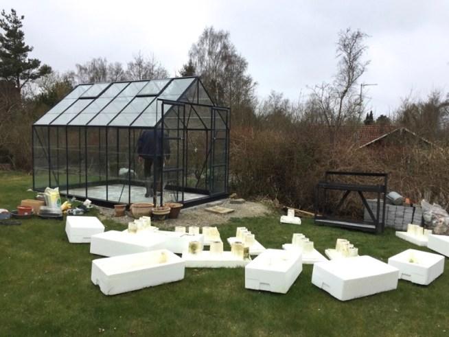 drivhus i haven