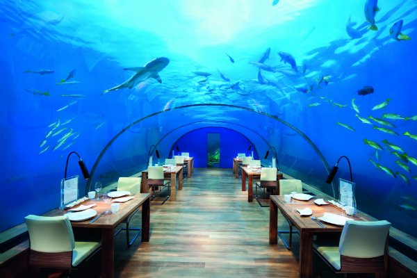conrad-maldives_ithaa-undersea-restaurant-3