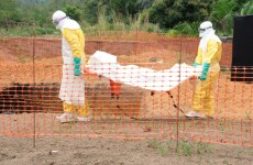 Experts Urge Global Action As Ebola Death Toll Rises