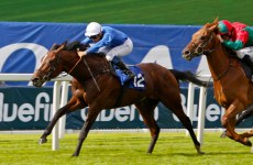 Dubai's Godolphin Mourns Loss Of 2012 St Leger Winner Encke