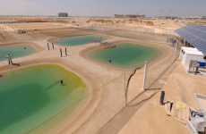 World's first facility growing food, fuel in a desert ecosystem opens in Abu Dhabi