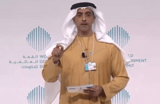 "UAE will ""extinguish fire in Yemen"" – deputy PM"