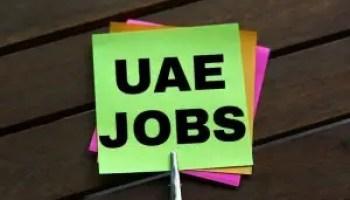 7x multiple jobs in Abu Dhabi UAE   Gulf Career Hunt