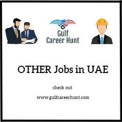 Senior Web Designer Gulf Career Hunt