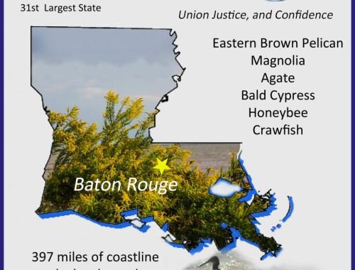 Louisiana Info Graphic