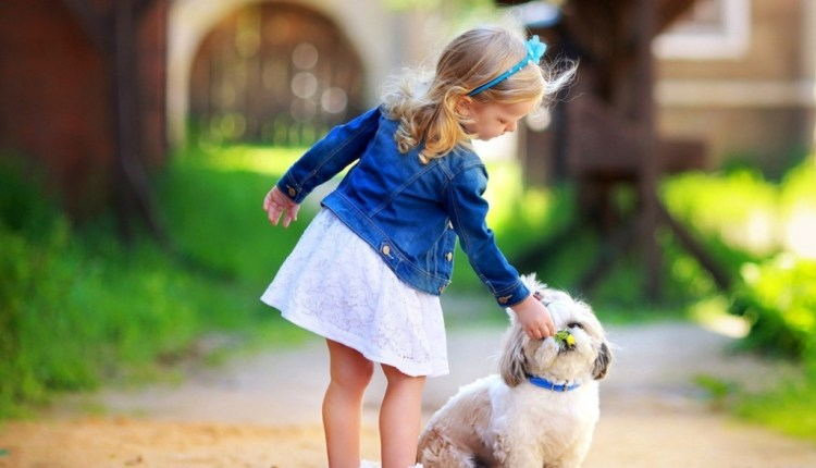 girl_and_dog-1024×768