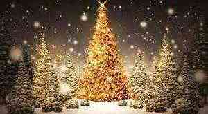 Christmas 2014, Enjoy a merry Christmas, Christmas, healthy tips, 2014, extremely happy