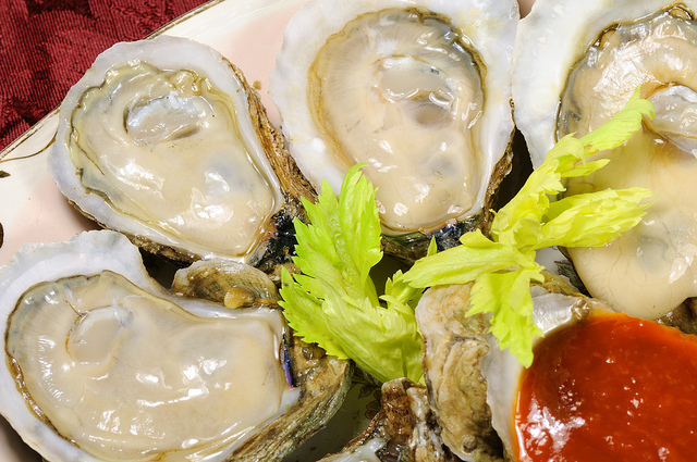 oysters are cultured in the gulf of mexico
