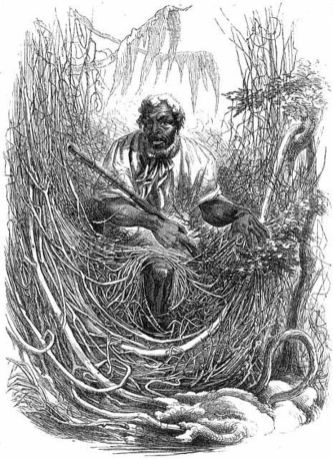 Exiled from History: America's Maroons