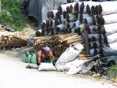 Träkolsproduktion är ett av näringsfången.