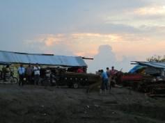 Lastning av palm till taktäckning på Isla Santa Rosa.