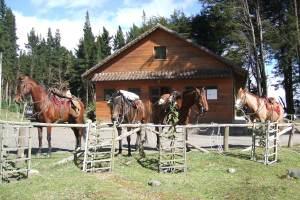 horsebackriding-ilinizas