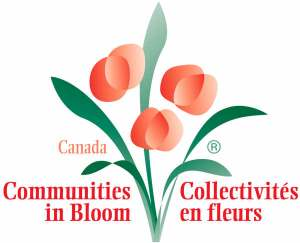 Town of Gull Lake Proclaims May 4th to 10th Communities in Bloom Week GULL LAKE SouthWest Saskatchewan Town Beautification  Town Council Saskatchewan Proclomation Communities in Bloom