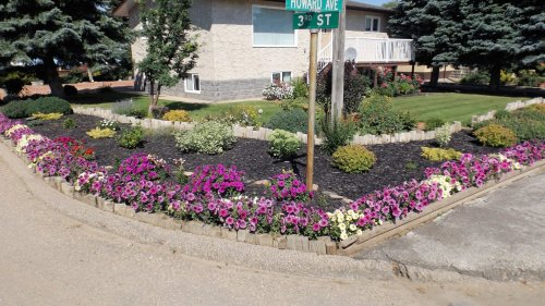 Gull Lake Communities in Bloom Floral Displays Competition Contestants GULL LAKE SouthWest Saskatchewan Town Beautification  Communities in Bloom