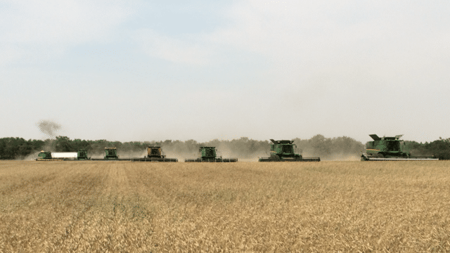 Agriculture Canada Predicts Strong Industry For 2016 - SwiftCurrentOnline.com Agriculture  Canada