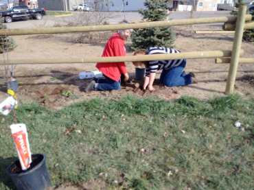 Tree Planting at the Xeriscape Garden GULL LAKE Town Beautification  Volunteers Communities in Bloom