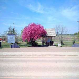 North Entrance Rest Area