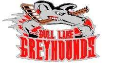 Greyhound Hockey