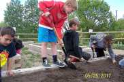 Grade 3 Class Plants Flowers at the Community Gardens GULL LAKE Town Beautification  Gull Lake School Community